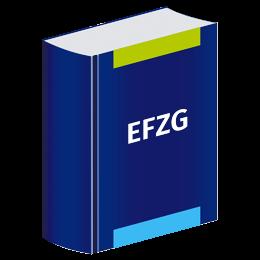 EFZG Onlinekommentar