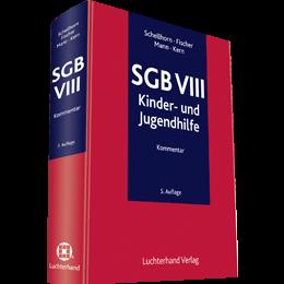 SGB VIII - Kommentar