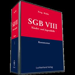SGB VIII